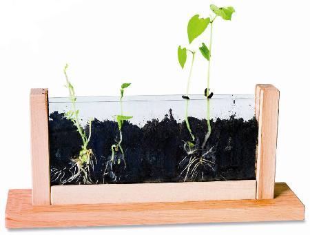 biologische-montessori-artikel2