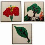 biologische montessori pflanzen puzzle